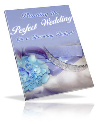 Product picture The Perfect Wedding Guide